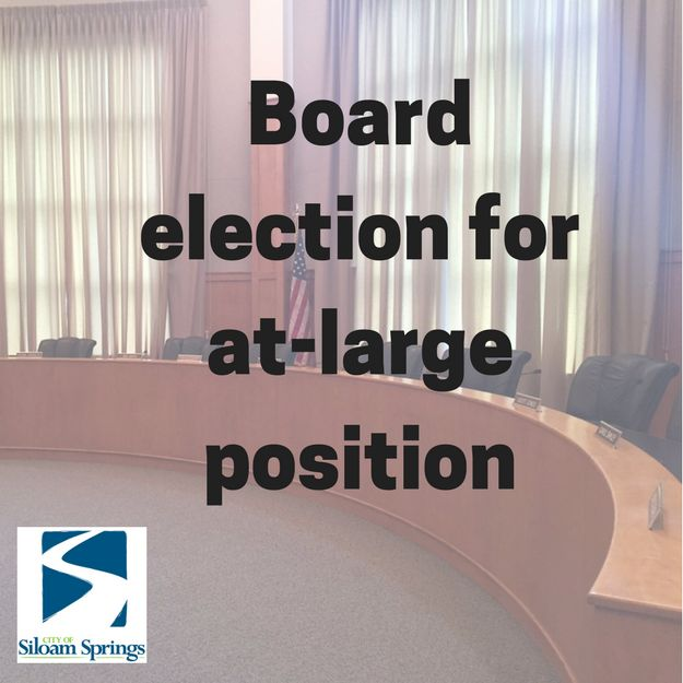 Board election for at-large position